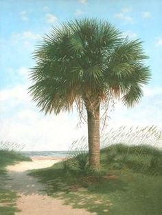From Denmark, SC Jim Harrison, Palmetto State, Drawing Board, South Carolina, Denmark, Holiday Ideas, Bliss, Art Photography, Southern