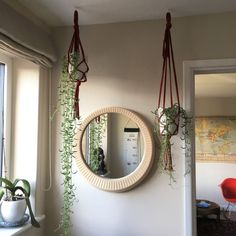 Step by step guide on how to make a simple easy plant hanger for a senecio radicans (or string of bananas) planthanger