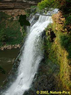 Burgess Falls Natural Area Burgess Falls, Natural Beauty, Waterfall, Wildlife, Places, Nature, Outdoor, Outdoors, Naturaleza