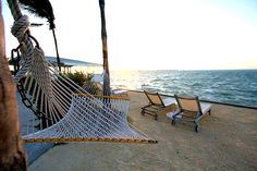 I've always enjoyed a hammock, they seem like an amazing spot to relax and read in.