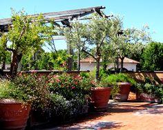 Terrazzo Roma Italgarden design | Terrazzi | Pinterest | Terrazzo