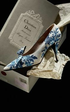 Roger Vivier for Christian Dior Shoes in Toile de Jouy, 1956.