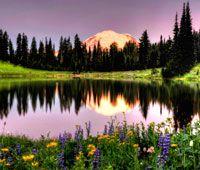 10 wildflower hikes