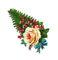 Antique Images: Free Printable Botanical Flower: Digital Antique Rose Clip Art with Fern and Blue Ribbon