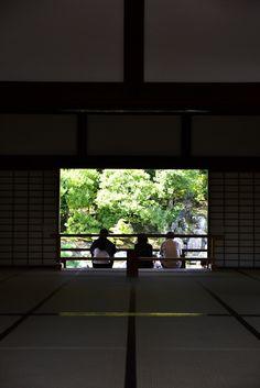 DSC_0317 | bởi shrine's forest