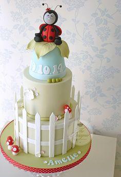 The Designer Cake Company Ladybug Cakes, Owl Cakes, Baby Cakes, Barnyard Cake, Jungle Cake, Garden Cakes, Different Cakes, Novelty Cakes, Cute Cakes