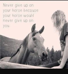horse image by horse quotes. Discover all images by horse quotes. Funny Horses, Cute Horses, Pretty Horses, Beautiful Horses, Equine Quotes, Equestrian Quotes, Equestrian Problems, Inspirational Horse Quotes, Motivational Sayings