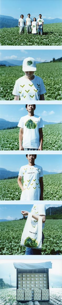 LACUE 2010 長野県上川村のレタス農家「LACUE」のVIを担当。Lettuce packaging in action PD