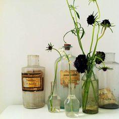 Des vases chinés plein de charme