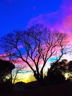 BAITOBEK ENDAY: Colores de la tarde