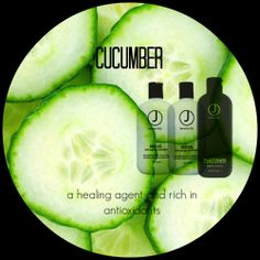 #CUCUMBER in #haircare | Cucumber is an antioxidant as well as a curative . Antioxidants neutralize free radical damage while curatives provide healing benefits. Cucumber helps to heal the hair's structure while assisting with cuticle damage |  #jbeverlyhills PLATINUM PURITY SHAMPOO, RESCUE SHAMPOO & RESCUE CONDITIONER are each formulated with cucumber as one of their key extracts. //  #botanicallyinfused #jbhbotanicalguide #hair #haircare