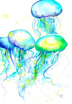 Herd of Jelly, #watercolor by Jessica Durrant #jellyfish