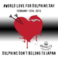 "Join Sea Shepherd Conservation Society and Supporters Worldwide at ""World Love for Dolphins Day"""