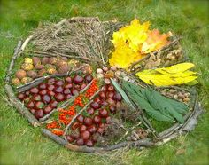 Autumn land art - shared via Nurture Store ≈≈