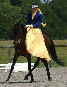 Not only do I want to learn dressage, but I want to learn side-saddle!
