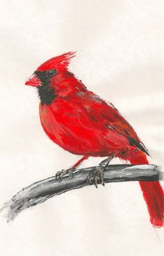 Beautiful print of a hand painted cardinal