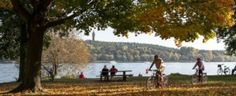 Grunewald is the largest green area in Berlin. It is located in the West side of Berlin, and is easily accessible by S-Bahn. The river Havel runs through it, and it stretches along part of the Großer Wannsee lake, and also has a number of smaller lakes.