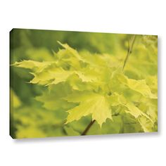 "Three Posts Spring Leaves I Photographic Print on Gallery Wrapped Canvas Size: 12"" H x 18"" W x 2"" D"