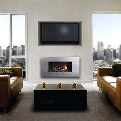 Escea Ferro Stainless Steel Gas Fireplace | from hayneedle.com
