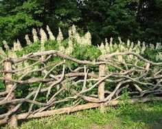 Twig fence to keep the  dogs out. So cute!