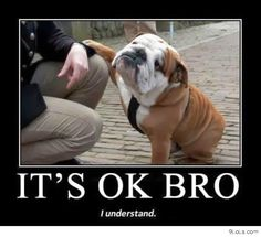 cute animals pictures with quotes - Google Search