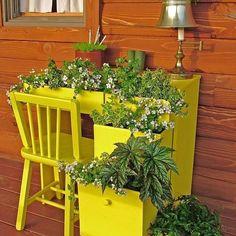 Escrivaninha antiga transformada em um pequeno jardim 😍😍😍 #diy #façavocêmesmo #decor #decoração #garden #jardim #plantas #inspiration #inspiração