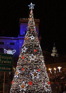 Terra Christmas