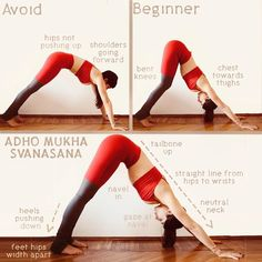 """bb6ead960a363 Best Yoga on Instagram  """" bestyoga post today! by  martina  rando .  Downward facing dog tips for beginners. . Follow  bestyoga for daily yoga  inspiration!"""""""