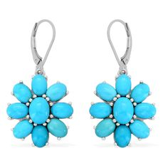 Liquidation Channel:  Arizona Sleeping Beauty Turquoise Lever Back Earrings in Platinum Overlay Sterling Silver (Nickel Free)
