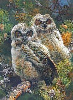Carl Brenders - Hidden in the Pines Birds Jigsaw Puzzle
