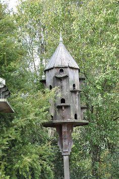 Old Dove Cote  