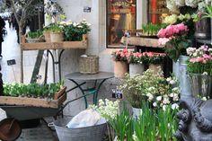 Liberty Flower Shop. London