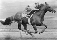 Whirlaway - 1941 Triple Crown winner April 2, 1938 - April 6,1953