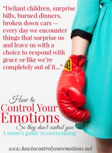 A practical, highly useable, biblical model for overcoming your emotions. From MOB Society co-founder, and Hope for the Weary Mom co-author, Brooke McGlothlin. Grab it today!