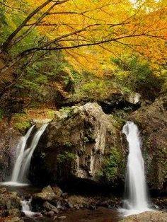 長野県佐久穂町の古谷渓谷は凄く風光明媚なスポット 乙女の滝という滝があり紅葉の時期は何とも絵になる風景を楽しめます ぜひ行ってみてくださいね tags[長野県]