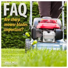 Now that spring has sprung (‼️🔅), lawns should be mowed regularly at their proper heights. Learn more about Best Mowing Practices and keep your lawn in tip-top shape this season! Lawn Care Tips, Green Lawn, Lawn Mower, Curb Appeal, Weed, Outdoor Power Equipment, Lawns, Spring, Patio