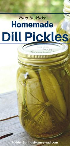 The Perfect Canning Recipe for Dill Pickles. A complete step-by-step how to can Dill Pickles complete with photos. Recipe for both refrigerator pickles and long-term storage for dill pickles. How to safely store your homemade dill pickles. Canning Dill Pickles, Pickles Recipe, How To Make Pickles, Pickels, Refrigerator Pickles, Pickling Cucumbers, How To Pickle Cucumbers, Homemade Pickles, Thing 1