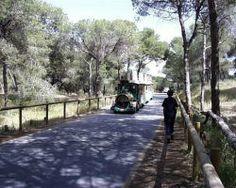 Dunas De Guardamar
