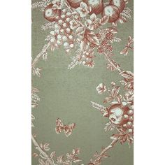 Thibaut Fruit Bouquet Toile Wallpaper ($89) ❤ liked on Polyvore featuring home, home decor, wallpaper, bronze wallpaper, trellis pattern wallpaper, toile de jouy wallpaper, thibaut wallpaper and pattern wallpaper