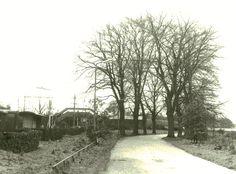 Struikheiweg, Bussum-zuid.