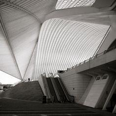The Liège-Guillemins TGV Railway Station, in Liège, Belgium. Designed by Santiago Calatrava. Photo by Chris Schroeer-Heiermann. Via.
