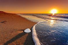 Beach shell sunset. Great Island, Wellfleet MA sunset November 2015. Cape Cod photographer Dapixara.