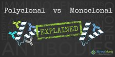 Polyclonal vs Monoclonal Antibodies - Learn about the differences between polyclonal and monoclonal antibodies with our antibody resource guide. Oncology Nursing, Neuroscience, Reduce Stress, Biology, Medical, Learning, Medicine, Studying, Teaching