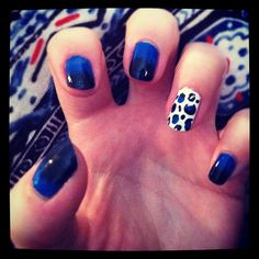 electric blue and black gradient with leopard accent.