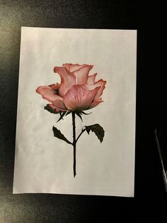 Rose / Realistic / Drawing