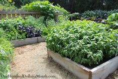 Garden Tours and Projects of 2013