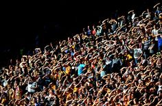 Hull City fans watch the game against West Ham in brilliant sunshine. Got to be east stand! Hull City, West Ham, Sunshine, Fans, Soccer, Football, Group, Watch, Board