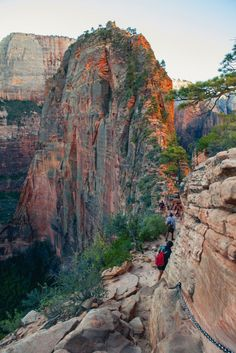 "Zion National Park has so much to offer that it can be tough to decide how to divide your time. Here are my five favorite Zion National Park Hikes, which can be accomplished in 2 days at the park. 1. Angel's Landing [caption id=""attachment_1317"" align=""aligncenter"" width=""800""] Angel's Landing.[/caption] One"