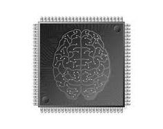 microchip brain