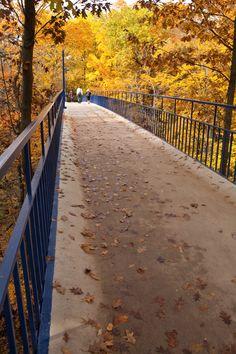 Little Mac Bridge in the fall.